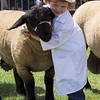 GYS 14_181_sheep young handlers