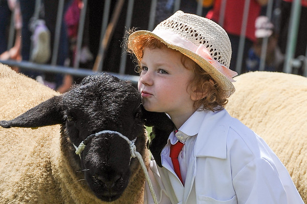 GYS 14_150_sheep young handlers