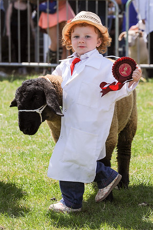 GYS 14_160_sheep young handlers