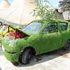 GYS 14_205_Grass car