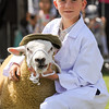 GYS 14_139_sheep young handlers