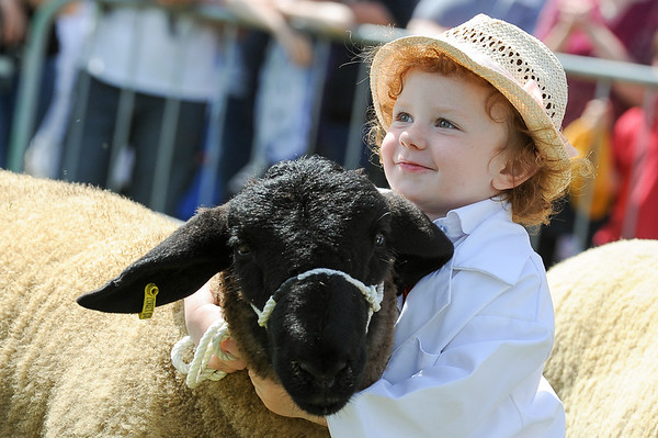 GYS 14_155 A_sheep young handlers