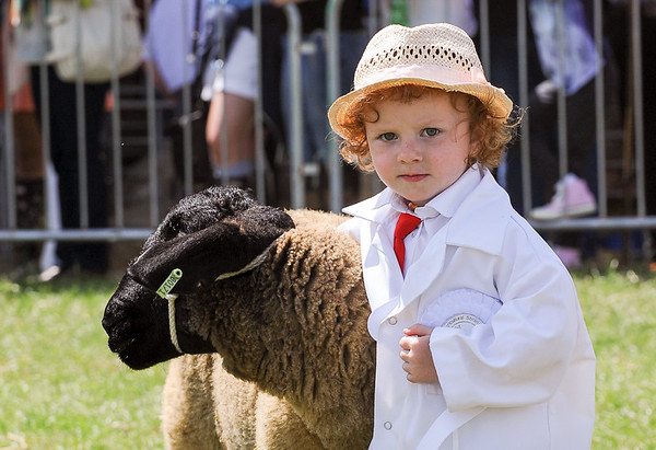 GYS 14_183_sheep young handlers