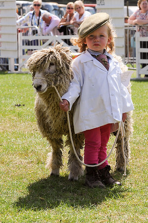 GYS 14_177_sheep young handlers