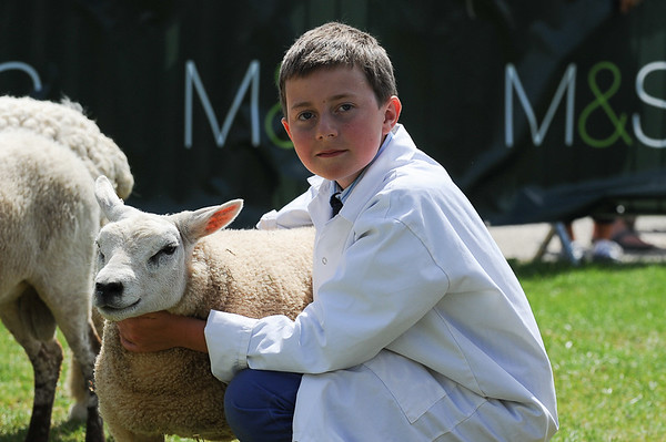 GYS 14_168_sheep young handlers