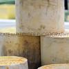 055 cheese gv