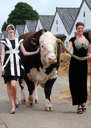 GYS 2012 Models Ruth Summerskill & Olivia Nolan with 3 year old Hereford bull Flynn