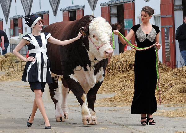 GYS 2012 Ruth Summerskill (left) & Olivia Nolan wih 3 yearold Hereford bull Flynn at the G Yorks Show.