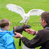 GYS 2012 Samuel Stowe aged 4 meets birds of prey at the GYS