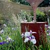 gys2012 lanscape garden winner (9)DJ