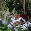 gys2012 lanscape garden winner (8)DJ