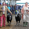 GYS 2012 Sheep exhibitors wed at GYS Anne & Kevin Robinson