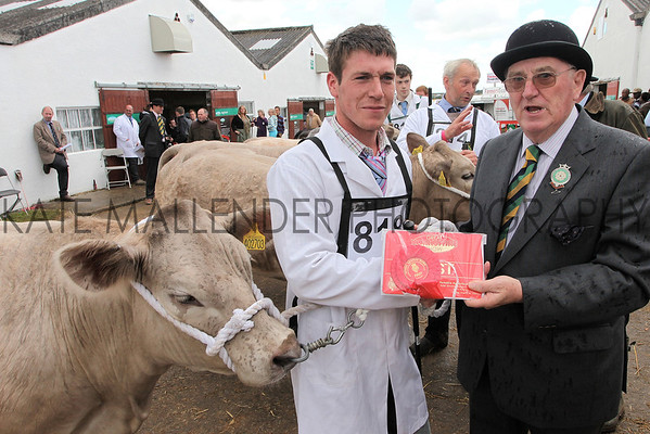 gys 2012 Wednesday: Ken Morrison presents rosettes in the Beef competition. Class: Pure or Cross Bred Heifer, first place: 818, Charolais Cross, Mr D P Allen of Malton North Yorkshire.<br /> pic: Doug Jackson