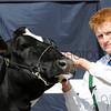 086 dairy young  handler