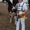 GYS 2012 Supreme Dairy champs Elaine Butterfield with Ards Duplex O Ruth