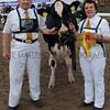 GYS 2012 Supreme Dairy champRobert & Elaine Butterfield with Ards Duplex O Ruth