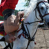 149 Cossacks