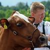 090 dairy gv