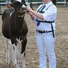 043 dairy young handler