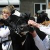 085 dairy young handler