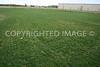Premier Softball Diamond outfield grass