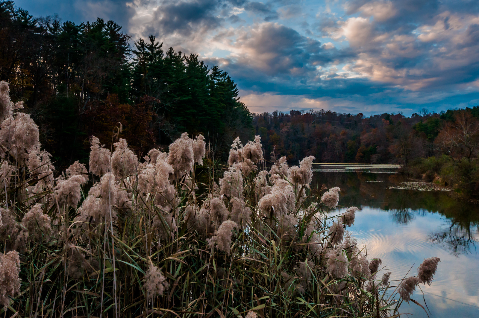 Photo of Lake Williams, York County, Pennsylvania