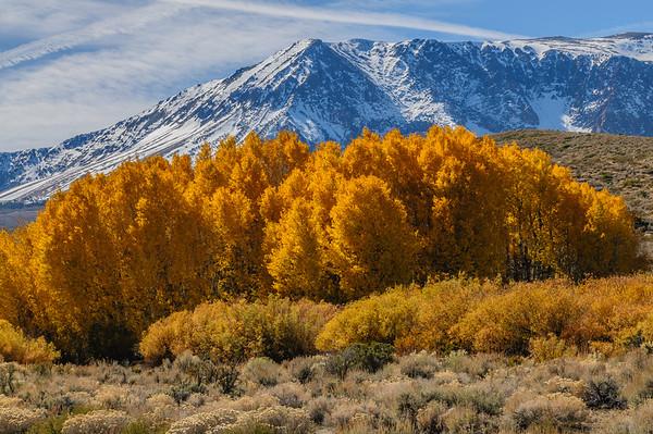 Eastern Sierra - October, 2009