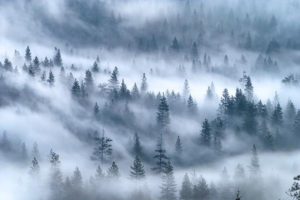 Early Morning Fog, Yosemite Valley below El Capitan