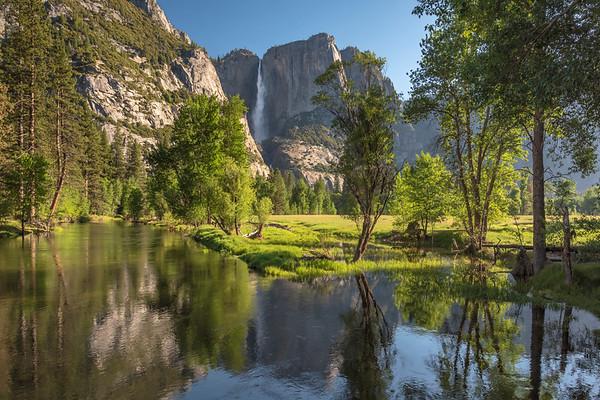 Yosemite Fall and the Merced River, Early Morning, Yosemite NP