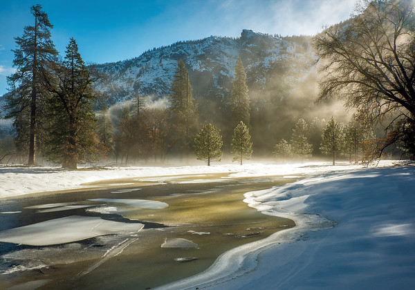 Winter Sunlight in El Capitan Meadow, Yosemite NP, CA