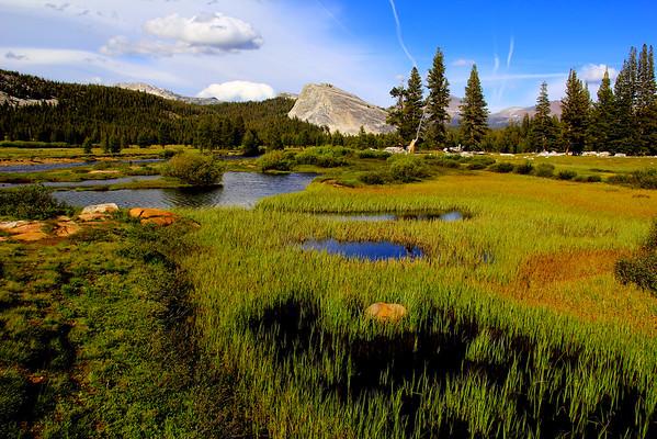 Tuolumne Meadows - Yosemite National Park