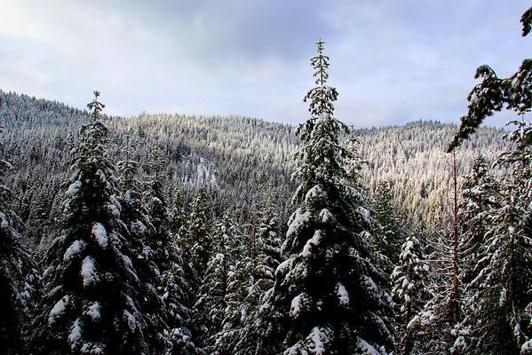 Yosemite West - Yosemite National Park