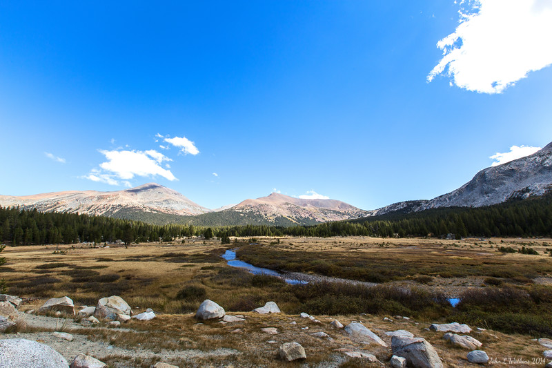 High Meadow at Yosemite