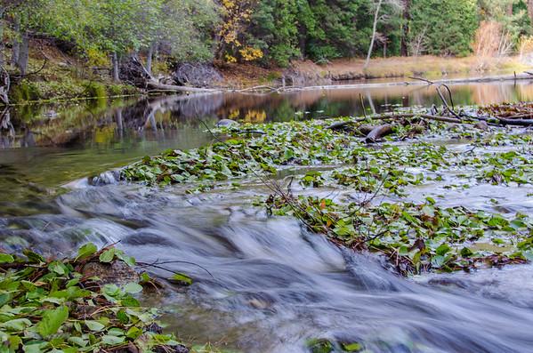 Flowing streams in Yosemite Valley
