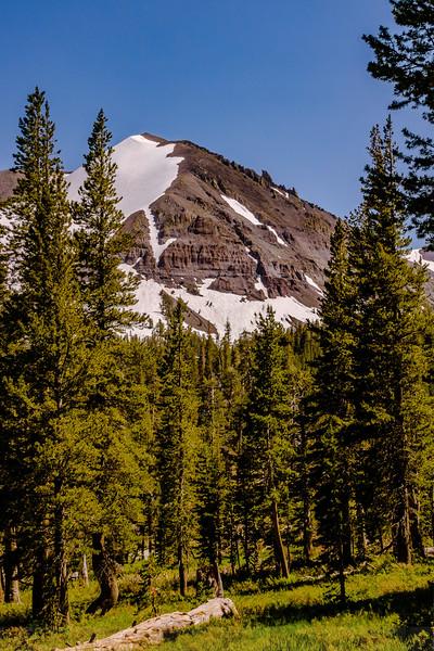 Leavitt Lake Trail