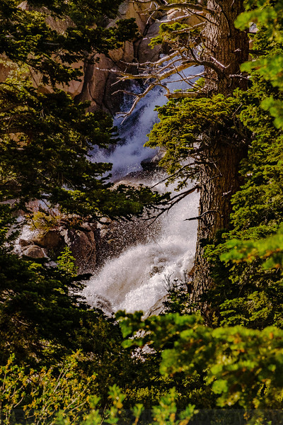 Cascading Water west of Sonora Pass