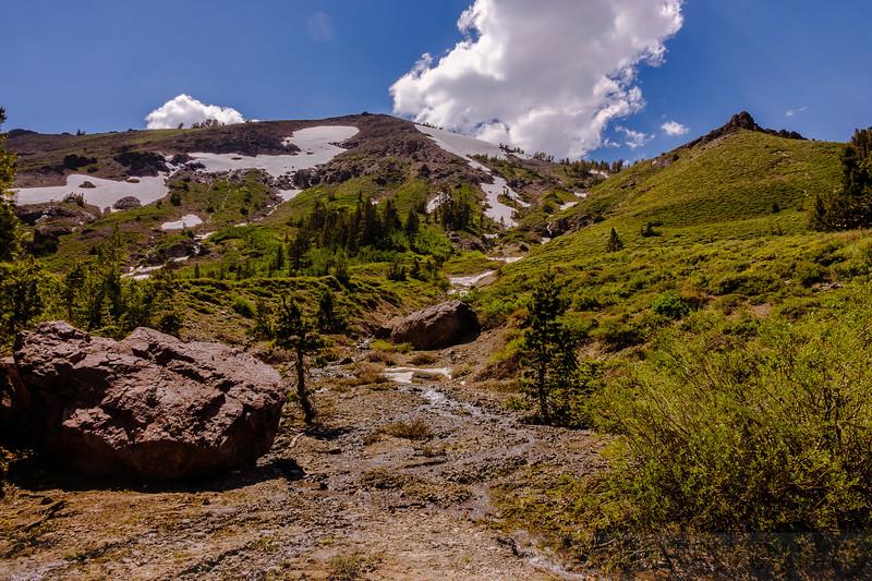Along Leavitt Lake Trail