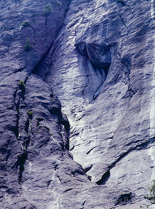Yosemite Valley Wall Detail