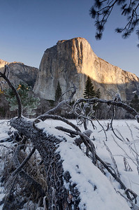 El Capitan and Frosted Log - Yosemite National Park, California - Mark Gromko - February 2013