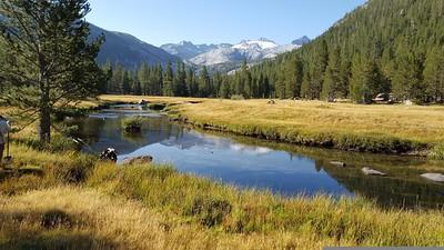 Wilderness Volunteers: 2016 Yosemite National Park (California)