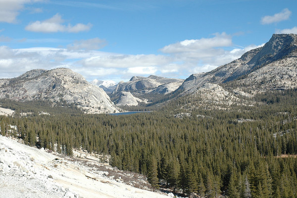 Tioga Pass Road - Tenaya Lake - Yosemite National Park
