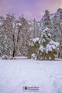 """Winter's Window,"" Sunset a snow covered Yosemite Meadow, Yosemite National Park, California"