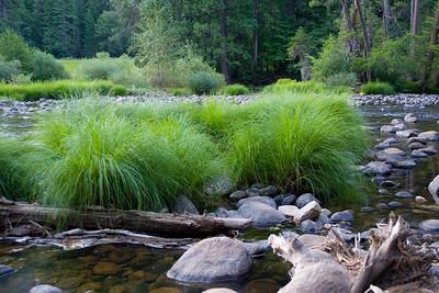 Yosemite 559e