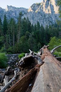 Yosemite 562e