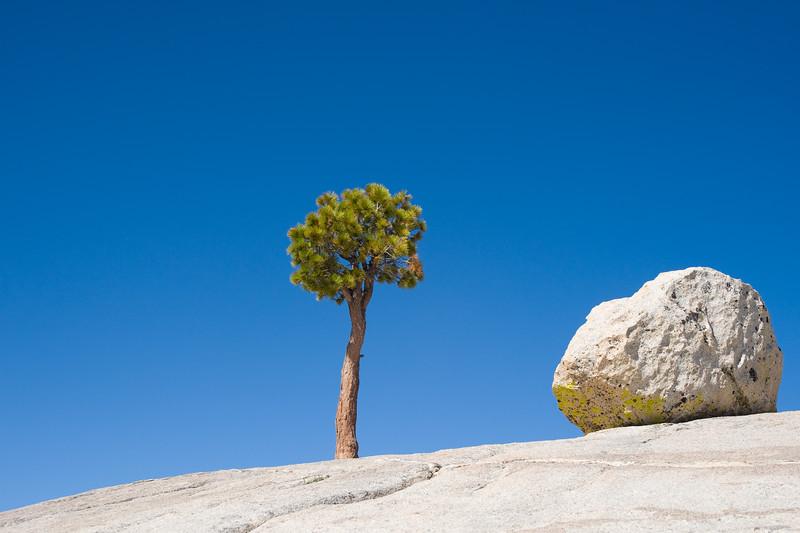 Yosemite 592e