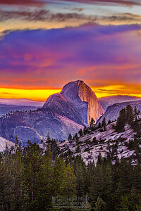 """Serenity,"" Half Dome Sunset, Yosemite National Park"
