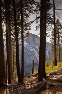 JSP 20151207 Yosemite-1