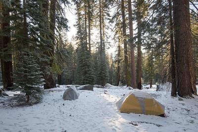 JSP 20151207 Yosemite-31