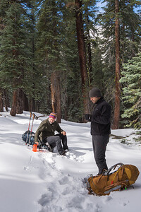 JSP 20151207 Yosemite-23