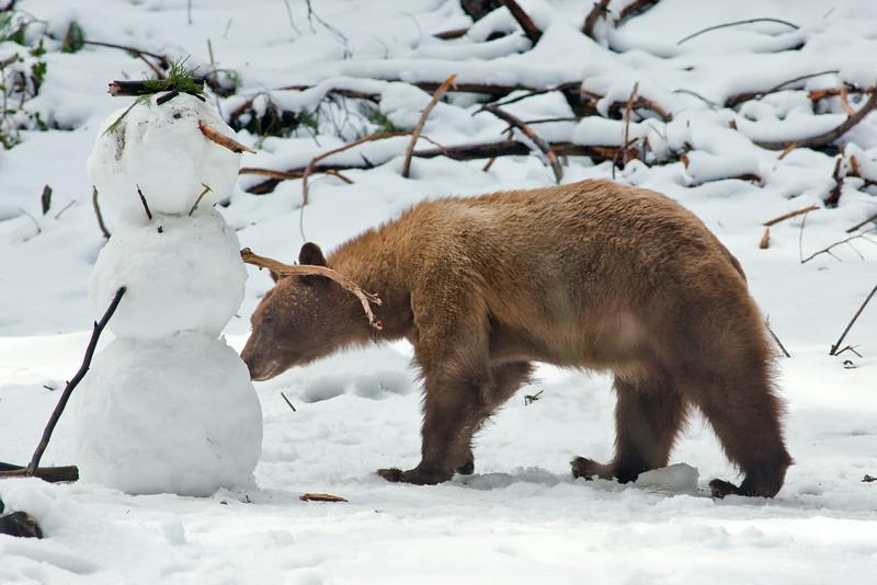 """""""Bear and Snowman"""""""